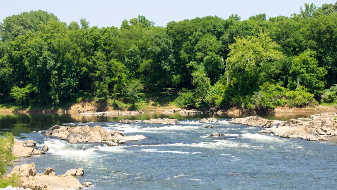 Roanoke River at River Falls Park in Weldon.jpg