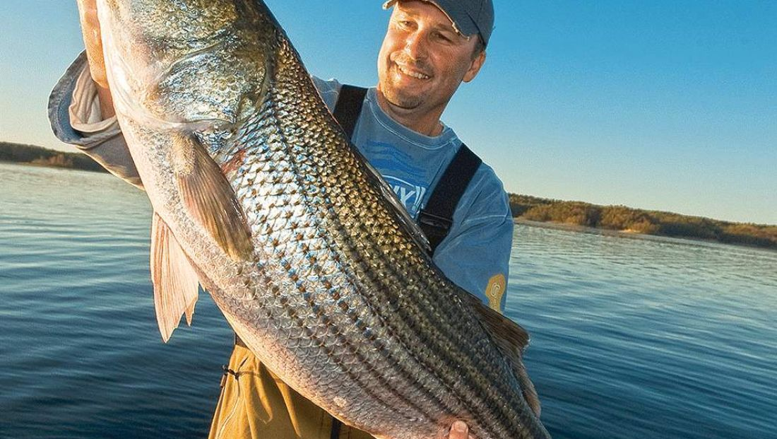 Striped Bass Season Begins Story.jpg